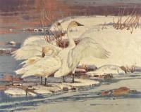 White On White / Jim Morgan / 24.00x30.00 / $13000.00