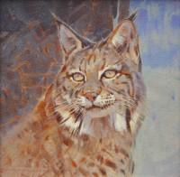 Bobcat Portrait / Jim Morgan / 12.00x12.00 / $3300.00