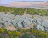 Desert Theatrics / Len Chmiel / 25.00x31.00 / $19400.00/ Sold