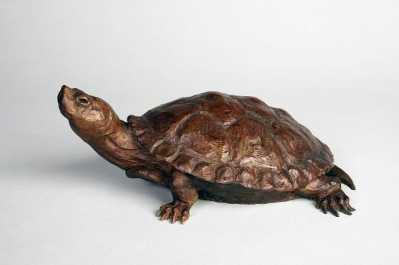 Remi's Turtle / Dan Ostermiller / 5.00x12.00 / $2400.00