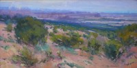 Spring Showers - Canyonlands / Jill Carver / 15.00x30.00 / $3900.00